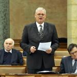 Aradszki András fideszes képviselő, az Országgyűlés fenntartható fejlődés bizottságának többségi előadója beszél a paksi erőmű bővítéséről szóló T/13628.számú törvényjavaslat vitáján az Országgyűlés plenáris ülésén 2014. február 3-án. MTI Fotó: Kovács Attila