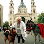 Csala Zsuzsa Hopi nevű kutyájával és egy Snufi nevű szamár a Magyar Állatvédő és Természetbarát Szövetség rendezvényén, az Állatok Világnapja alkalmából rendezett felvonuláson Budapesten. A Szent István térről a Hősök terére tartó menetben állat- és természetvédő szervezetek, iskolák képviselői négylábú kedvenceikkel együtt igyekeztek felhívni a figyelmet az állatok és a környezet védelmének fontosságára.  MTI Fotó: Soós Lajos