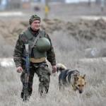 Ukrán katona járőrözik az Ukrajnához tartozó Krími Autonóm Köztársaság határában, a Herszon megyében lévő Sztrilkove településnél 2014. március 17-én, egy nappal az után, hogy a Krím félsziget helyi oroszbarát vezetése által kiírt népszavazáson a lakosok nagy többsége az Oroszországhoz való csatlakozás mellett foglalt állást. (MTI/EPA/Ivan Boberszkij)