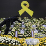 Az elsüllyedt Szevol dél-koreai komphajó áldozatainak virágokkal díszített oltára a dél-koreai Anszan város Olimpiai Emlékmúzeumában 2014. április 29-én. A balesetben több mint 300-an, főként diákok és tanárok haltak meg vagy tűntek el. Az azonosított áldozatok hivatalos száma vasárnap 193-ra módosult a korábbi 187-ről. A túlélők mindössze 174-en vannak. (MTI/AP/An Jung Dzsun)