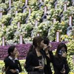 Gyászolók az elsüllyedt Szevol dél-koreai komphajó áldozatainak virágokkal díszített oltára előtt a dél-koreai Anszan Olimpiai Emlékmúzeumában 2014. április 29-én. A balesetben több mint 300-an, főként diákok és tanárok haltak meg vagy tűntek el. Az azonosított áldozatok hivatalos száma vasárnap 193-ra módosult a korábbi 187-ről. A túlélők mindössze 174-en vannak. (MTI/AP/An Jung Dzsun)