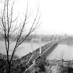1964. november 21. Kilátás a Gellért-hegyről az újjáépített Erzsébet hídra. A hidat 1945. január 18-án a visszavonuló német csapatok rombolták le. MTI Fotó: Urbán Nándor