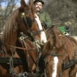 Kálloy Molnár Péter színész egy lovas kocsit hajt a közmédia új hatrészes sorozatáról, a Fehér Béla regényéből forgatott Kossuthkifliről tartott sajtótájékoztatón a Magyar Nemzeti Múzeum előtt 2015. március 3-án. MTI Fotó: Bruzák Noémi