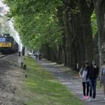 Balatonföldvár, 2015. június 17. Egy V63-as mozdony vontatta tehervonat halad a balatonföldvári védett platánsor alatt 2015. június 16-án. A napokban adták át a Lepsény és Szántód-Kőröshegy közötti korszerűsített vasúti vonalszakaszt. MTI Fotó: Máthé Zoltán