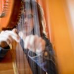 A 20 éves Lövei Petra hárfáján játszik otthonában, Álmosdon 2016. március 10-én. Családjában második gyermekként derült ki róla, hogy autista. Négy éve a debreceni Kodály Zoltán zeneiskolában tanul hárfa szakon. Célja, hogy sikereket érjen el a zenei pályán és ezzel megmutassa, hogy egy autizmussal élő lány is lehet különleges, egyedi és értékes ember a társadalomban.<br /> MTI Fotó: Komka Péter