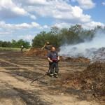 Több hektáron égett a tűz Komárom és Kisbér között. Fotó: S. B./<br /> Helyi Híradók