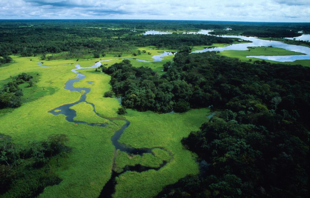 Amazonas-medence. (Fotó: Michel Rogg)