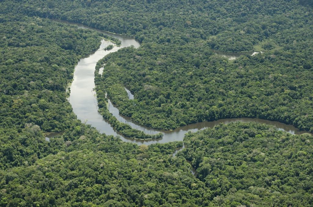 Amazonas-medence (Fotó: Ricardo Lisboa)