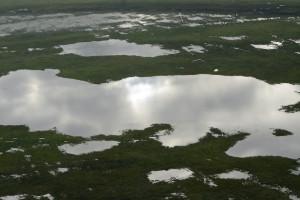Több tízezer hektár áll víz alatt