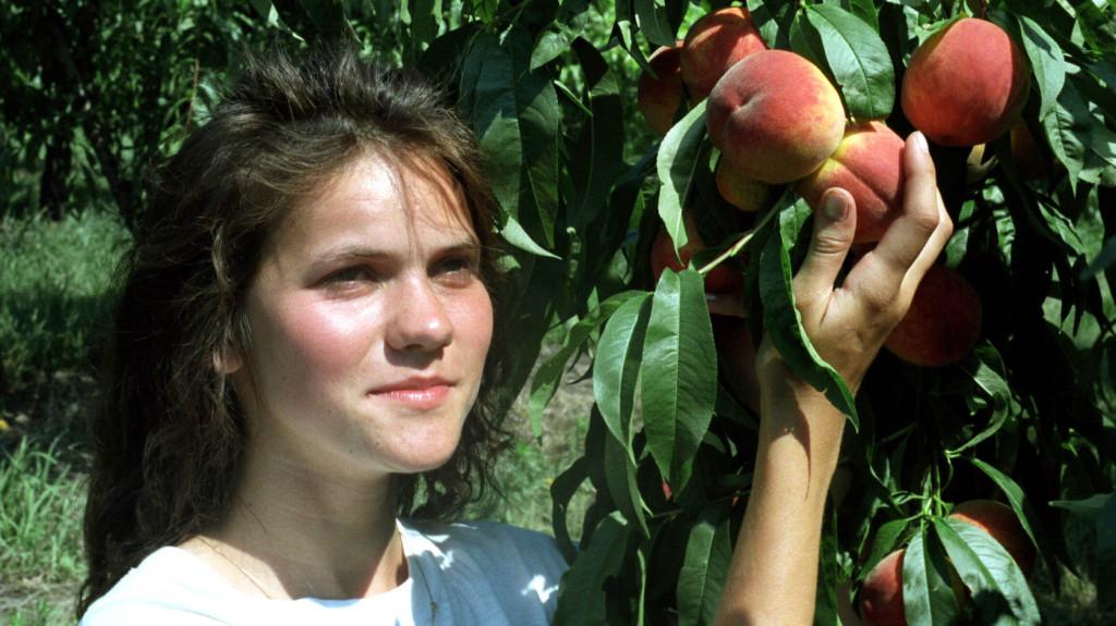Vidéki életre ösztönöznék a fiatalokat