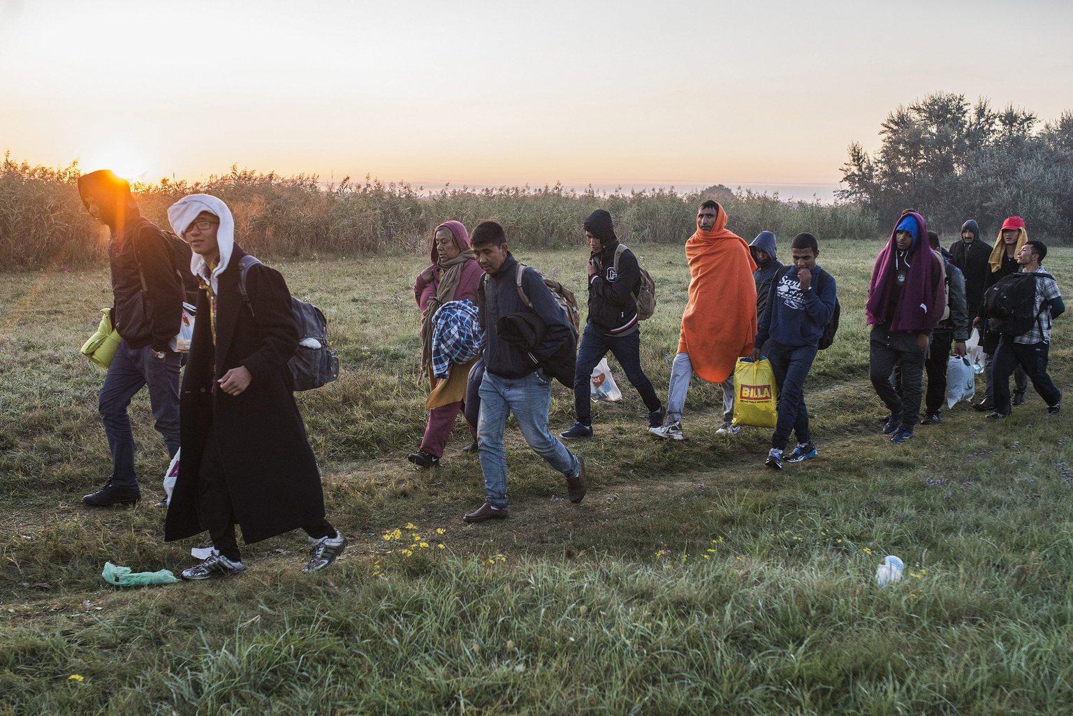Migránsok a Röszke melletti vasúti átjárónál a magyar-szerb határon 2015. szeptember 9-én reggel. MTI Fotó: Ujvári Sándor