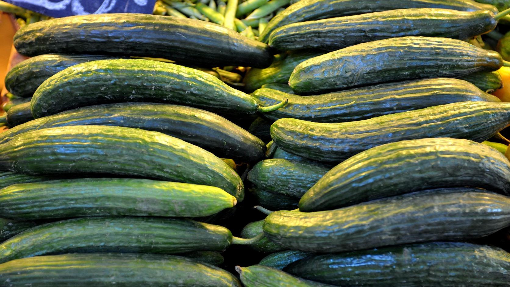 Budapest, 2011. június 3. Magyar kígyóuborka a pulton a Központi Vásárcsarnokban, ahol a vidékfejlesztési miniszter a németországi járvány miatt a zöldség-gyümölcs piaci helyzetről tájékozódik. MTI Fotó: Soós Lajos