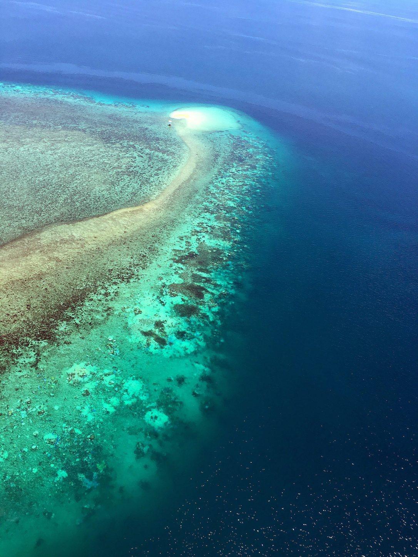A világ legnagyobb koralltelepét felügyelő ausztrál hatóság által 2016. március 29-én közradott, dátumozatlan felvétel az ausztrál Nagy-korallzátony kifehéredett szakaszáról Cairns és Pápua Új-Guinea között. A korallfehéredést a tengervíz hőmérsékletének emelkedése okozza, aminek hátterében a klímaváltozás és a Csendes-óceán trópusi felszíni vizeinek felmelegedését okozó El Nino légköri jelenség áll. A természetvédők ismét szorgalmazzák, hogy a koralltelep kerüljön fel a világ veszélyeztetett természeti örökségeinek listájára. (MTI/EPA)