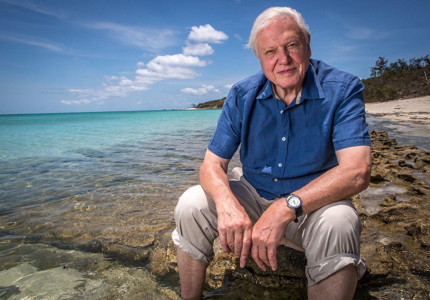 Az ABC által 2016. április 7-én közzétett képen Sir David Attenborough a Nagy-korallzátonynál háromrészes, a zátonyról szóló dokumentumfilmjének készítése közben. (Fotó: EPA/ABC)