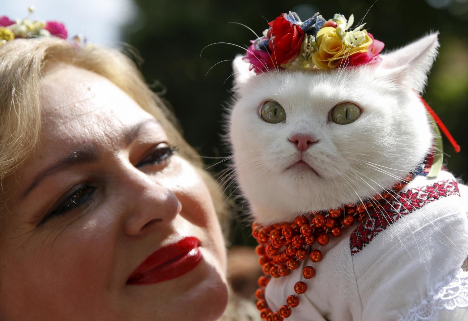 Egy nő tradicionális ukrán ruhában macskájával Kijevben. (Fotó: Reuters/Valentyn Ogirenko)