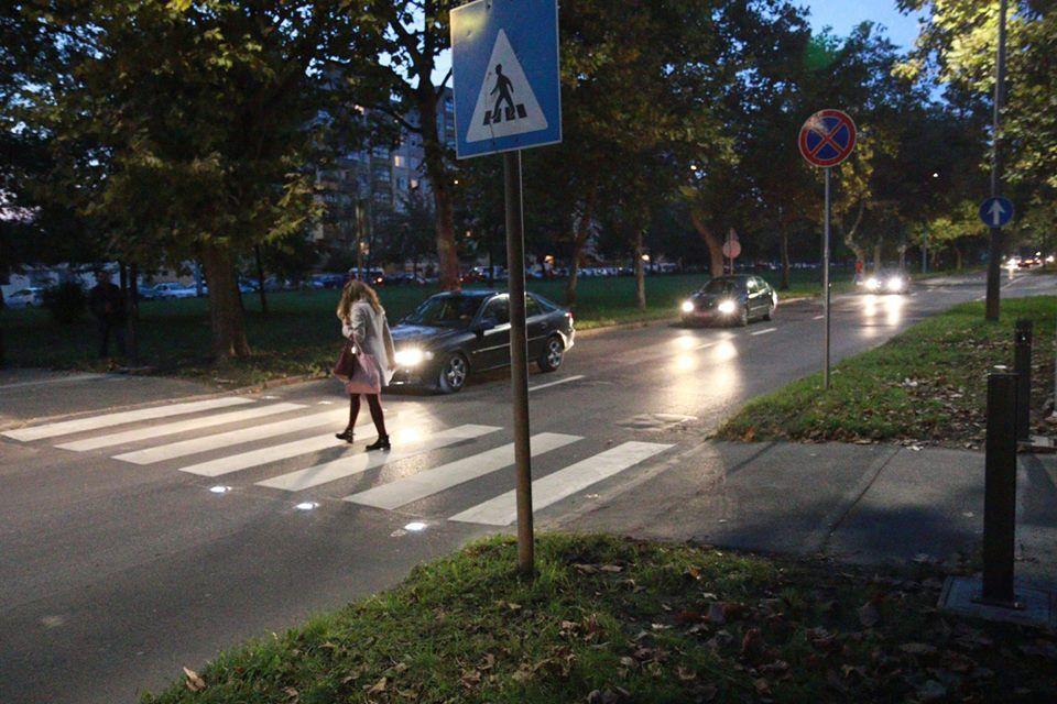 intelligens zebra Debrecenben
