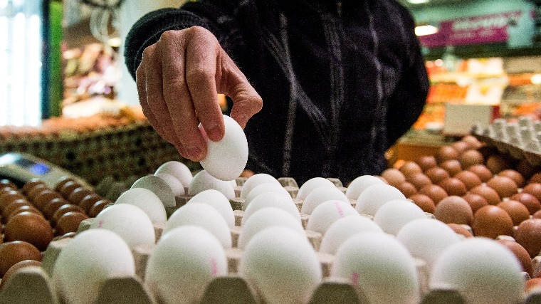 Tojások egy árus standján Budapesten, a Fehérvári úti vásárcsarnokban 2017. január 2-án. A baromfihús és az étkezési tojás általános forgalmi adója (áfa) 27 százalékról, a friss tejé 18 százalékról 5 százalékra csökkent január 1-jén. MTI Fotó: Balogh Zoltán