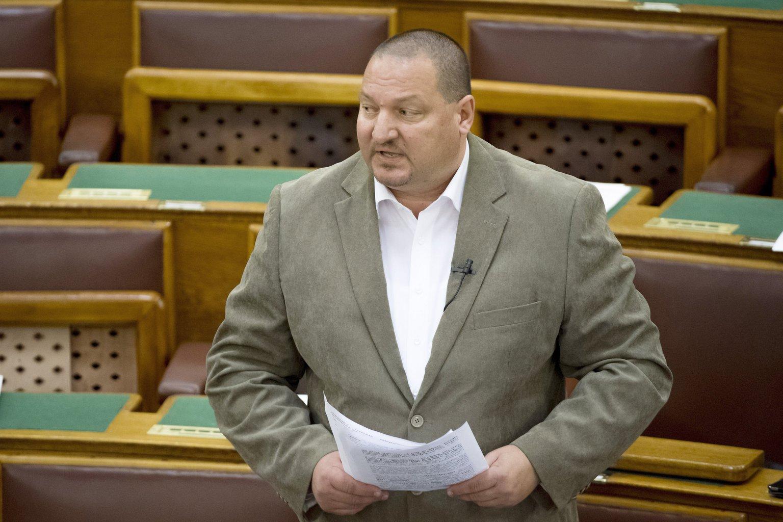 Németh Szilárd, a Fidesz frakcióvezető-helyettese (MTI Fotó: Koszticsák Szilárd)