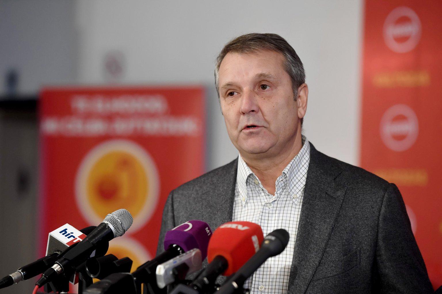 Molnár Gyula, az MSZP elnöke. MTI Fotó: Koszticsák Szilárd