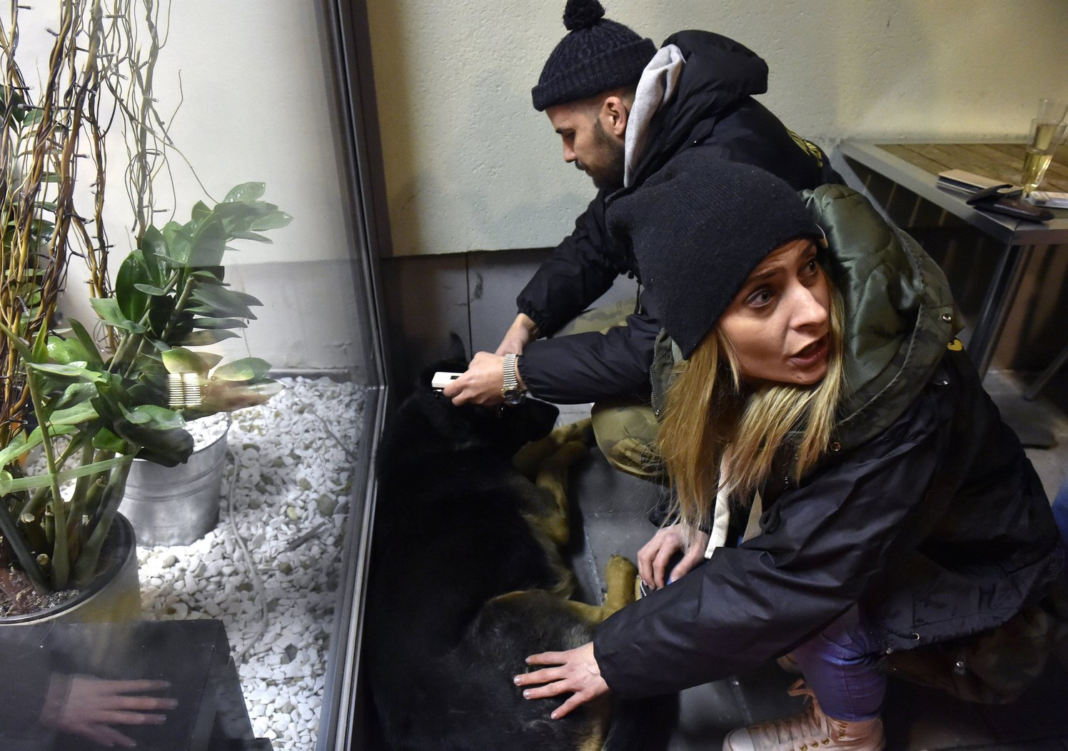 Az Állatmentő Szolgálat Alapítvány alapítója, Somogyi Zoltán és munkatársa, Némedi Edina egy petárdáktól megriadt, elszökött kutyát találnak egy XXII. kerületi szórakozóhely mellett  (MTI-fotó: Máthé Zoltán)