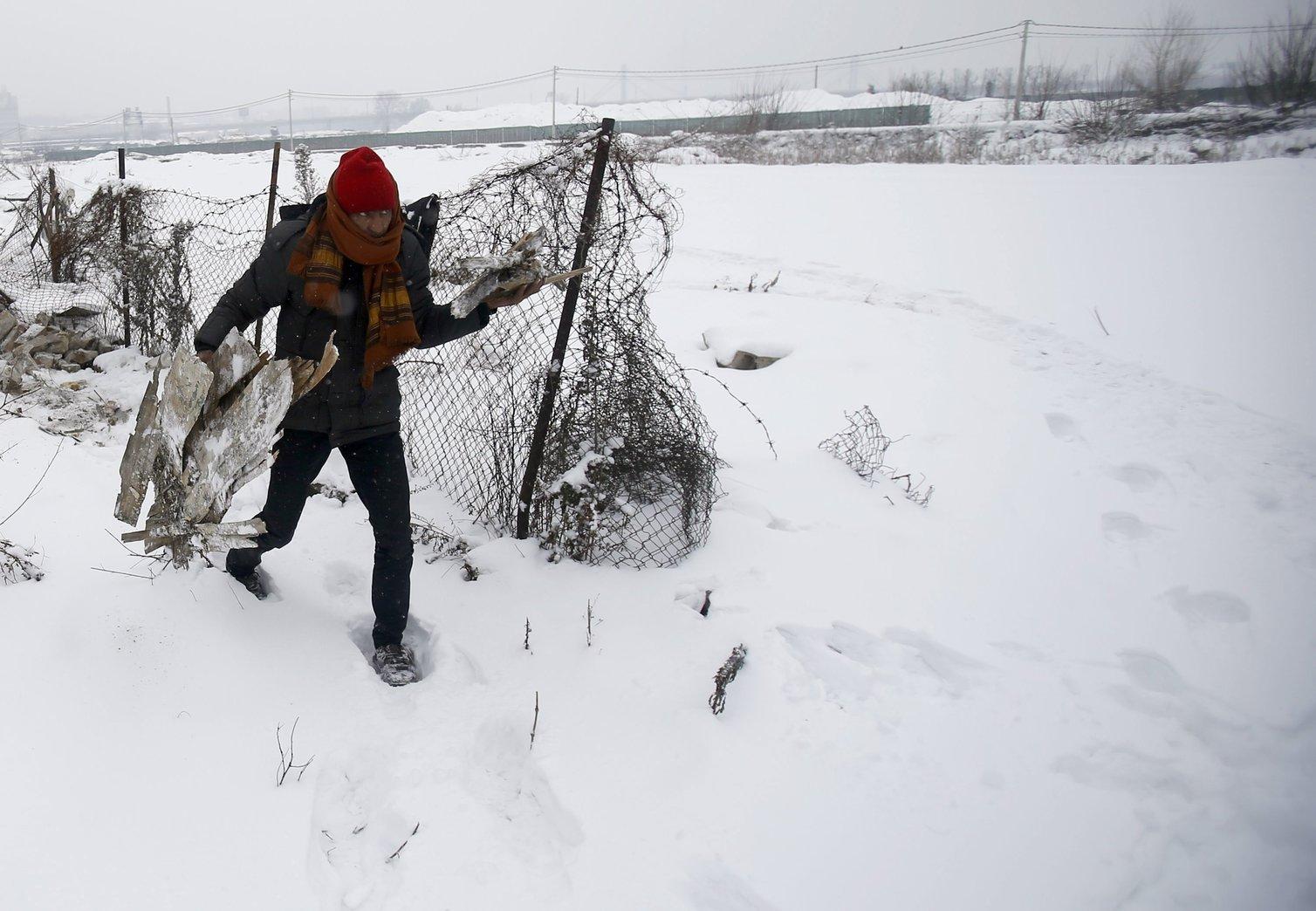 Tűzre való fát visz egy illegális bevándorló egy elhagyott belgrádi raktárépületnél 2017. január 11-én (MTI/AP/Darko Vojinovic)