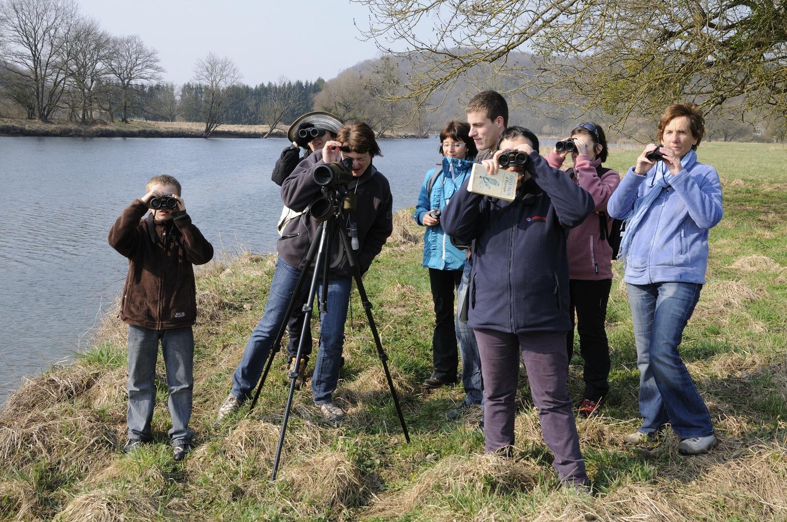 Illusztráció - madármegfigyelés. (Fotó: AFP)