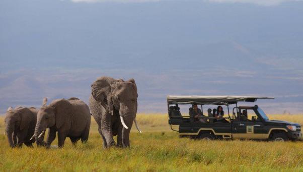 Vízi erőművet építenek Afrika egyik utolsó érintetlen vadvédelmi rezervátumában