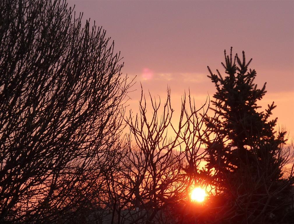 """""""Törökszentmiklóson kora reggel még reménykedtünk a napsütéses időben, de a reggeli álom elröpült, ugyanis még kora délelőtt beborult az ég, azóta  eseget csendesen."""" (Fotó: Kelemenné Bittner Erzsébet)"""