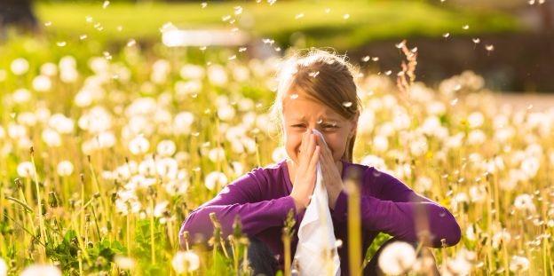 Allergológus: elsősorban a modern életvitel a felelős az allergiások számának növekedéséért