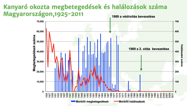 Az Országos Epidemiológiai Központ kanyarót illető adatinak grafikonja (Ábra: OEK)