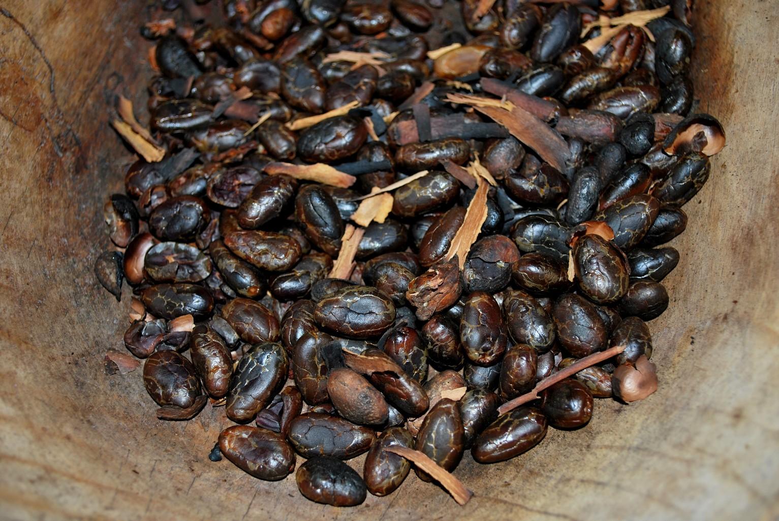 Pörkölt kakóbab a tabascoi La Chonita Haciendán, Mexikóban (Fotó: Wikipedia)