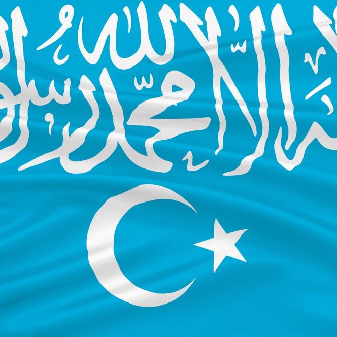 Ujgur zászló