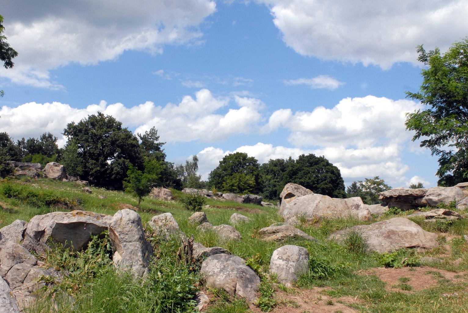 Szentbékkálla, 2009. július 19. Sziklák a Veszprém megyei Szentbékkálla határában található Kőtengerben. Valaha az itteni intenzív vulkanikus tevékenység következtében feltörő hévizek összecementálták a pannon kor tengerének homoküledékét, amelyet a szél, a csapadék és az erózió a későbbi földtörténeti korok folyamán változatos formákra alakított. A Kőtengert nemcsak az időjárás alakította; a sziklák egy részét bányászták is. MTI Fotó: Czimbal Gyula