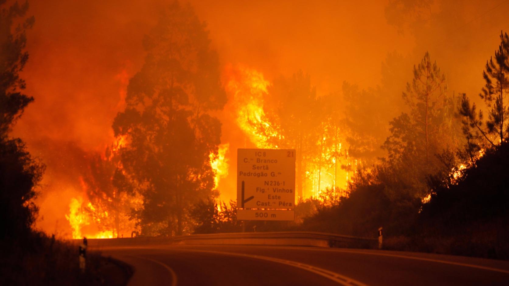 Pokol az utakon Fotó: EPA/PAULO CUNHA