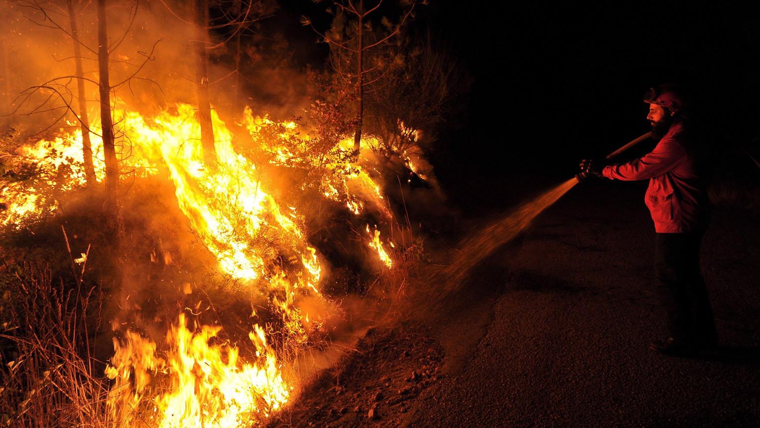 Egy tűzoltó próbálja megfékezni az erdőtűz lángjait  Portugáliában (Fotó: MTI/EPA/Nuno Andre Ferreira)