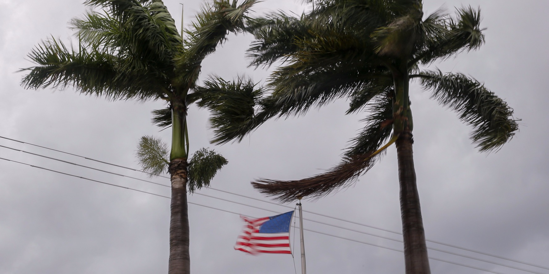 epa06194412 Palm trees and a US flag flutter in the increasing wind as the weather conditions deteriorate from Hurricane Irma in Florida City, Florida, USA, 09 September 2017. Many areas are under mandatory evacuation orders as Irma approaches Florida.  EPA/ERIK S. LESSER