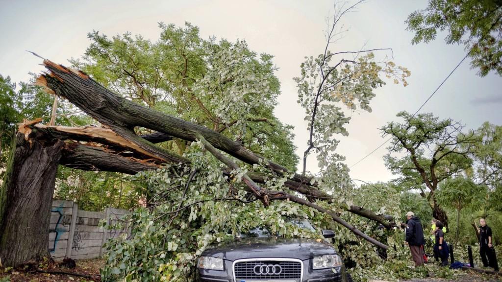 Még tart a kárfelmérés az erdélyi vihar után