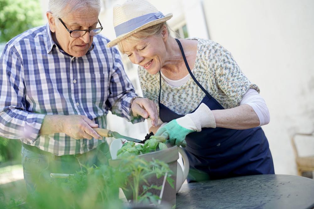 MSZP: Korrigálni kell a nyugdíjakat a jelentős áremelkedés miatt