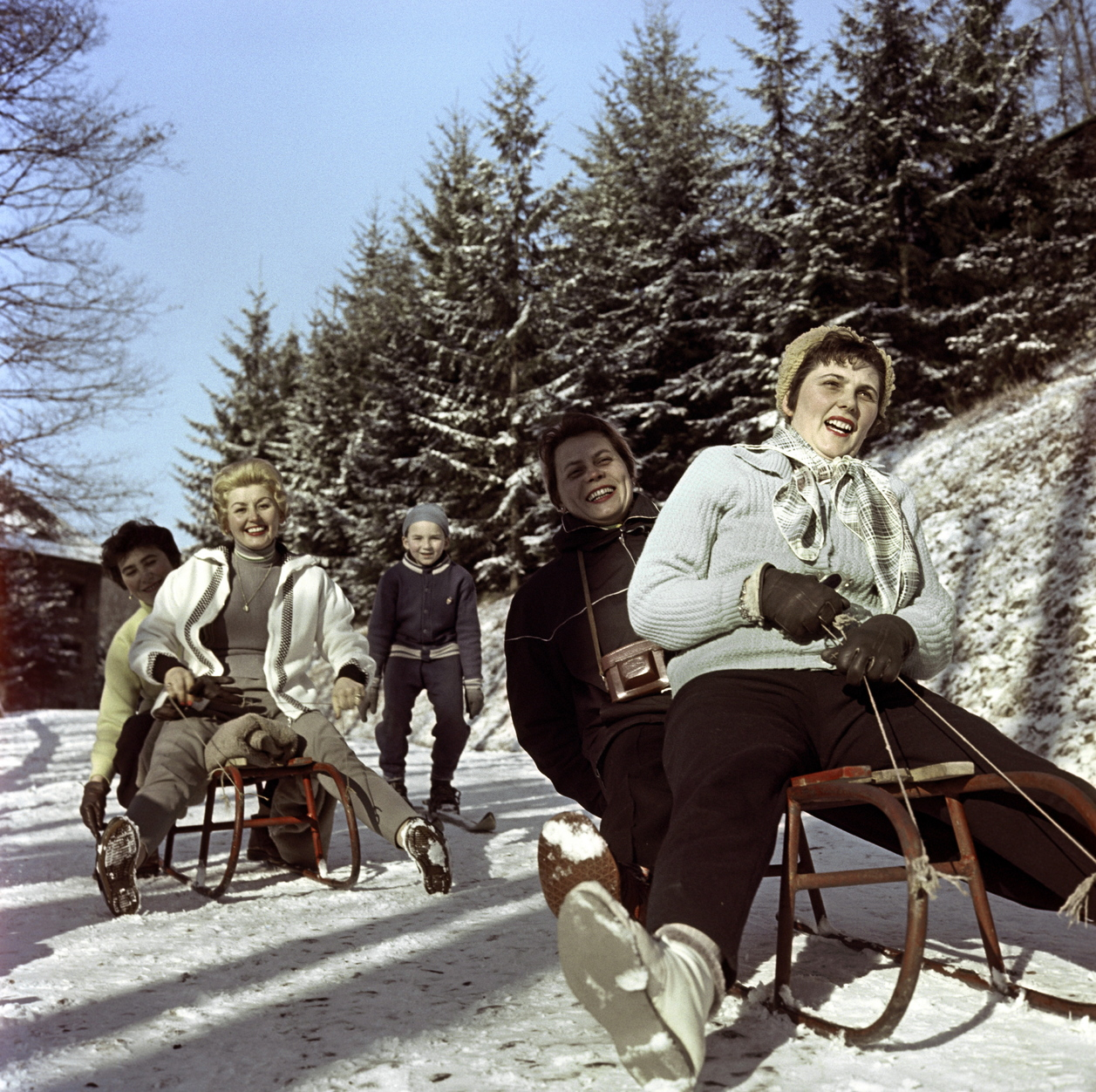 Mátra, 1961. január 14. Szánkózó felnőttek és egy síel kisfiú a Mátrában. A felvétel készítésének pontos helye ismeretlen. MTI Fotó: Bojár Sándor