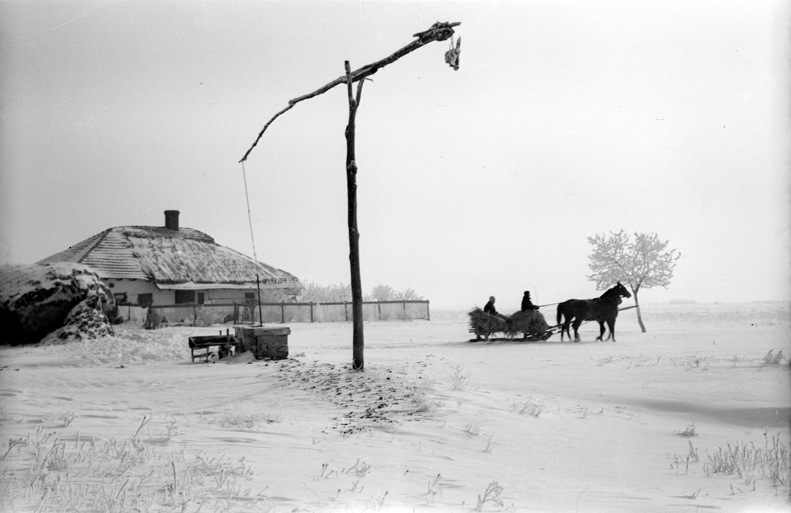 Gyoma, 1956. február 19. Gémeskút és lovasszán a havas alföldi tanyán. Magyar Fotó: Fehérvári Ferenc