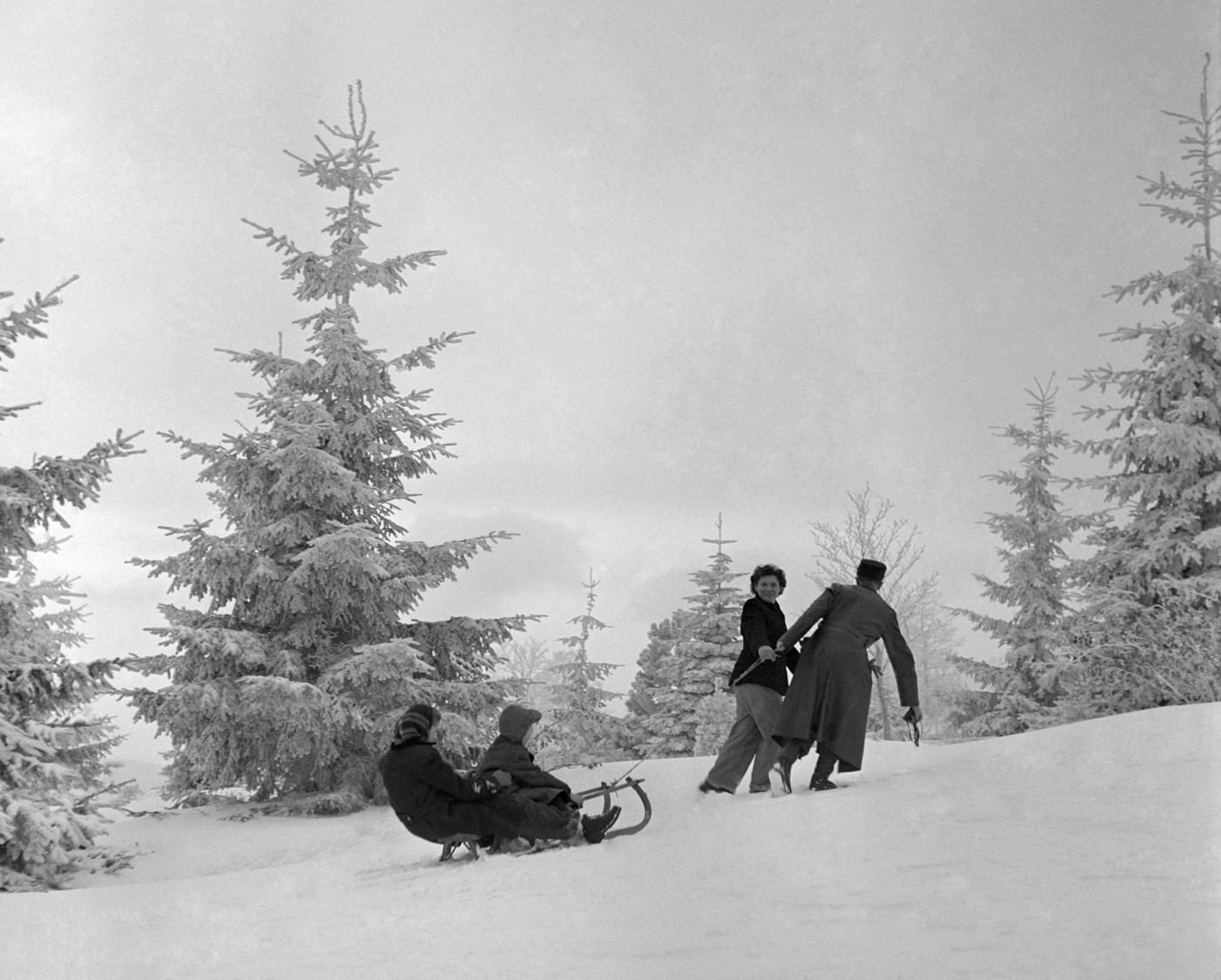 Galyatető, 1954. január 2. Szánkózó család Galyatető környékén. MTI Fotó/Magyar Fotó: Járai Rudolf