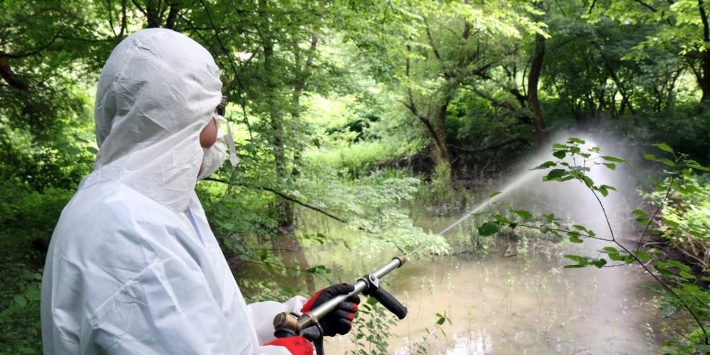OKF: hétfőn kezdődik a központi szúnyogirtás