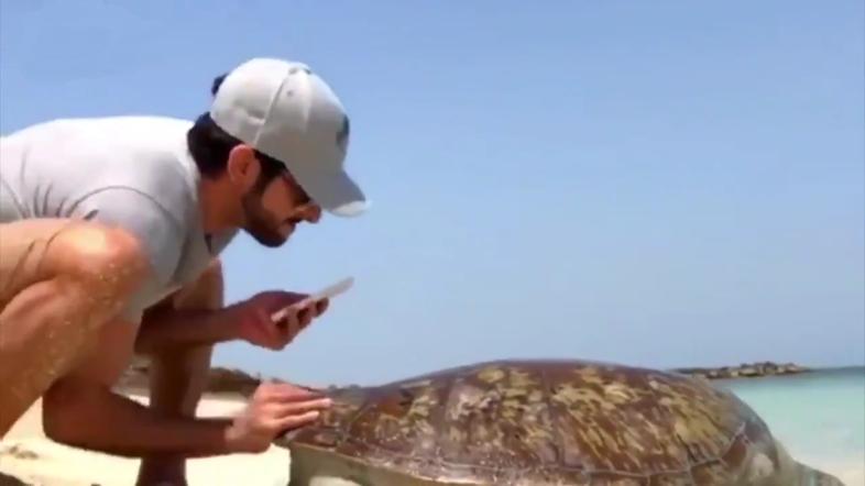Tengeri teknőst mentett Dubaj koronahercege