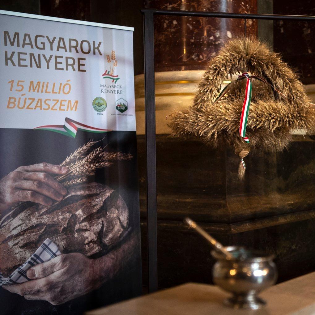 Megkezdődött a Magyarok Kenyere – 15 millió búzaszem program