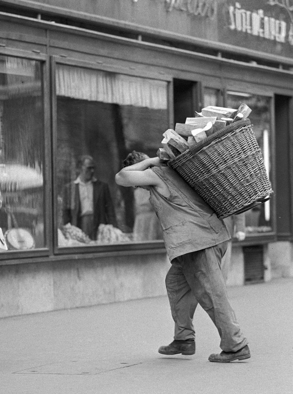Budapest, 1959. augusztus 4. Tűzifát szállító férfi Budapesten. MTI Fotó: Pálfai Gábor