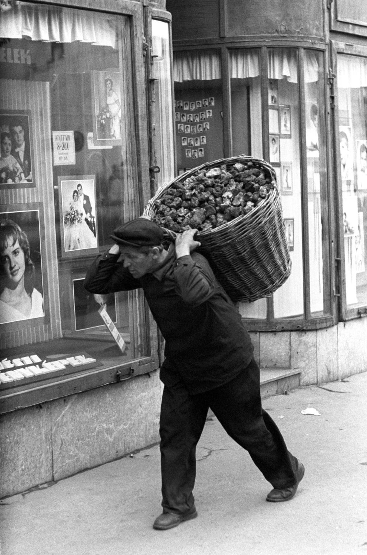 Budapest, 1962. július 4. Szenesember viszi teli kosarát egy fényképész kirakata előtt a hirtelen ősziesre fordult időben. MTI Fotó: Pálfai Gábor