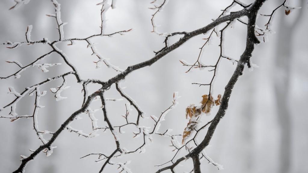 Többfelé havazott az országban