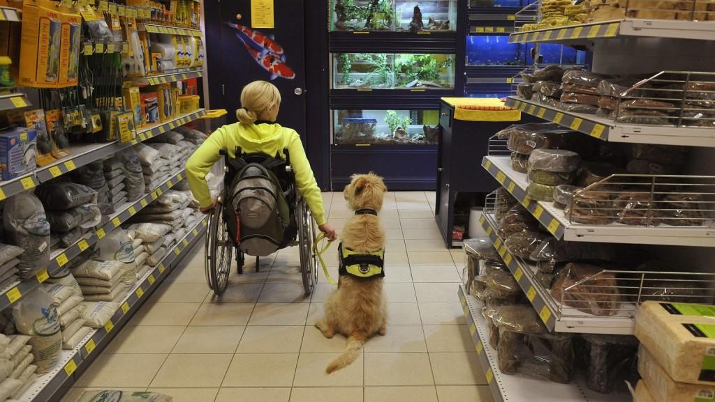 A kormány támogatja a fogyatékkal élők munkához jutását
