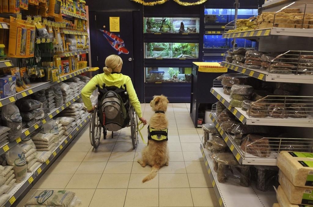 Tovább növelné a kormány a fogyatékossággal élők foglalkoztatását