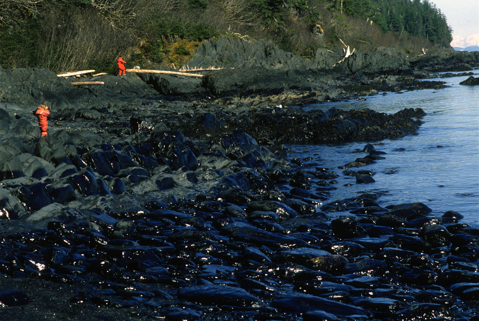 Journalists pick their way along the high-tide line marked by oil near Discovery Point on Knight Island April 7, 1989.  (Fotó: Erik Hill/Anchorage Daily News/MCT/Getty Images)